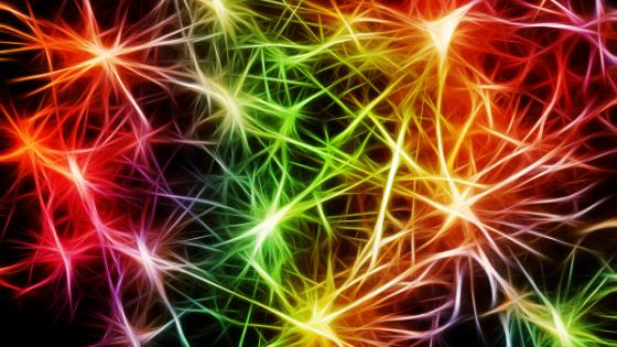 astrocyten en bloed-hersenbarriere